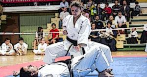 artes_marciales